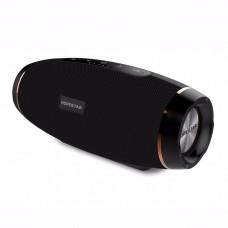 Колонка портативная с управлением Bluetooth Hopestar H27